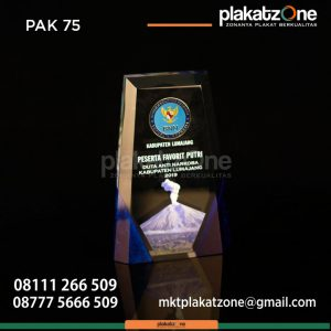 Plakat Akrilik Duta Anti Narkoba Kabupaten Lumajang
